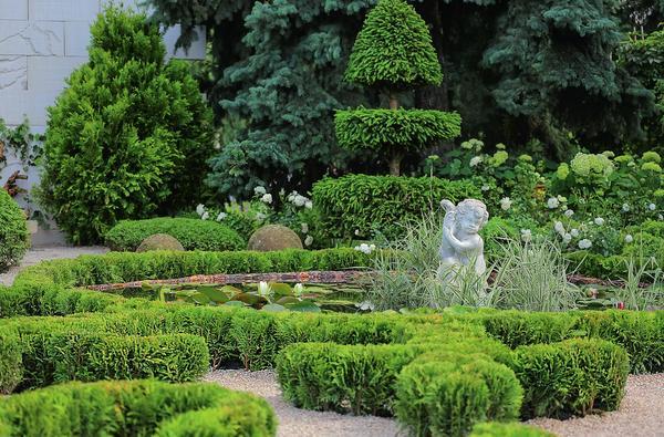 Снимаем садовый пейзаж
