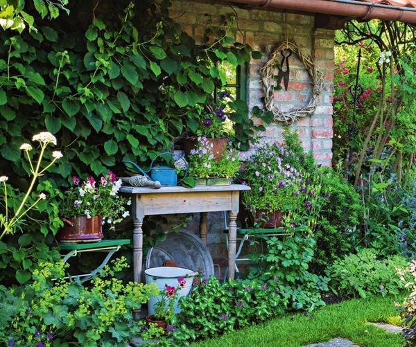 Замаскировать непривлекательный для пересадки растений помогут красиво цветущие горшечные питомцы