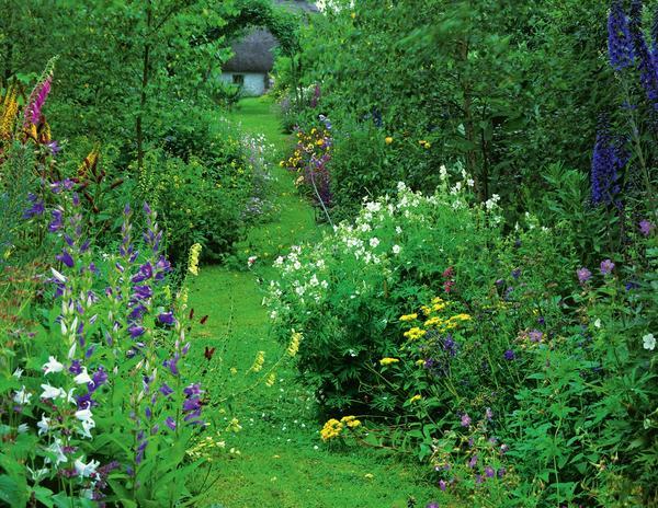 Утопающий в зелени, роскошный сад - мечта каждого