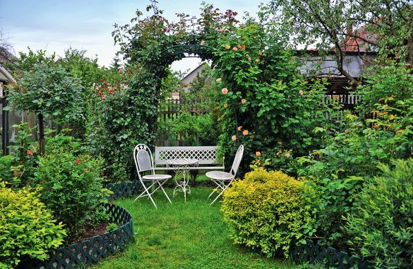 Удивительный сад в северном Подмосковье