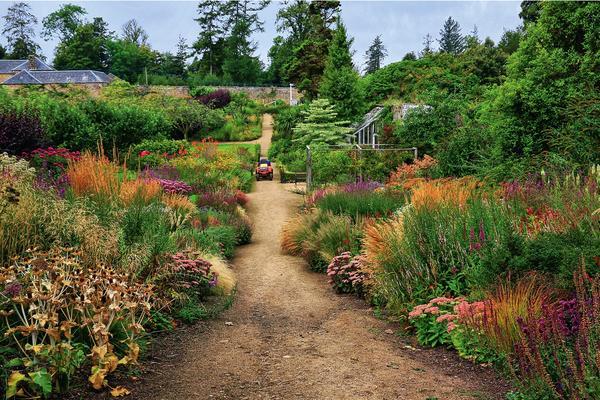 Уход за растениями в цветочном саду Кэмбо сокращен до минимума, а ограничение примения минеральных удобрений позволяет ограничить рост растений и повысить их декоративность