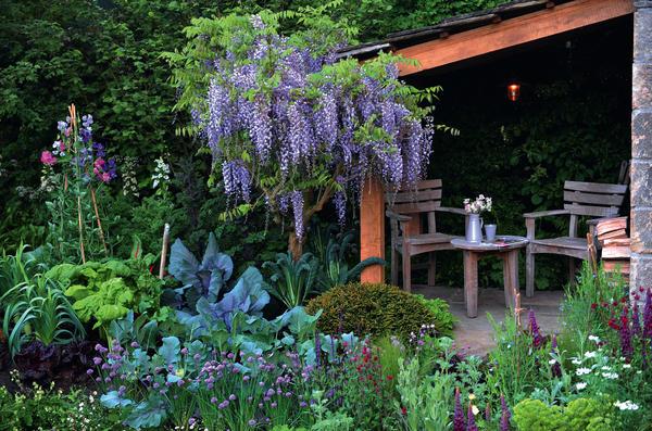 1. Многие огородные культуры настолько красивы и фактурны, что из них можно составлять декоративные клумбы или просто добавлять в цветники с многолетниками