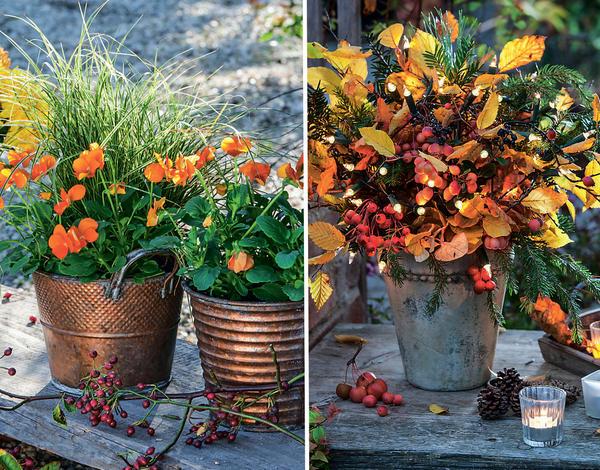 Осень - самое уютное время года - Страница 2 603808-nomark