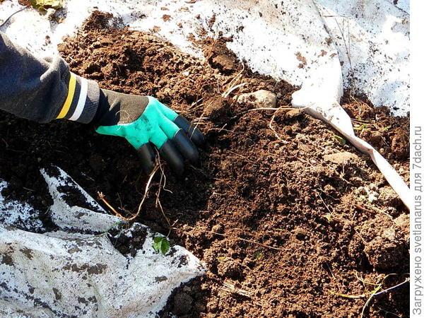 убираем корни