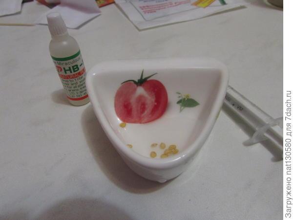 отмеряю нужное мне раствора( шприцом) переливаю в посуду для замачивания, куда помещаю 10 семян на 1 час