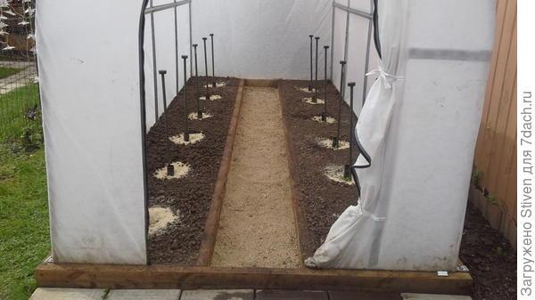 В четырех метровой теплицы - у меня будут расти 12 растений огурцов