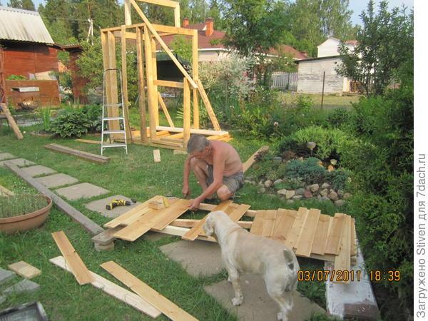 Муж строит рядом с ясенцом