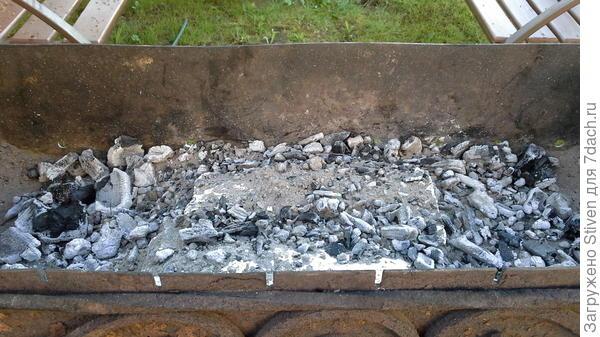 Рыба в мангале в углях