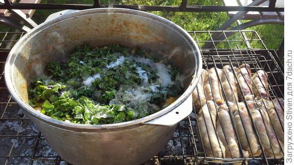 Тушение овощей с зеленью
