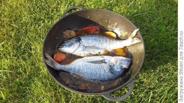 Закладка рыбы на овощи