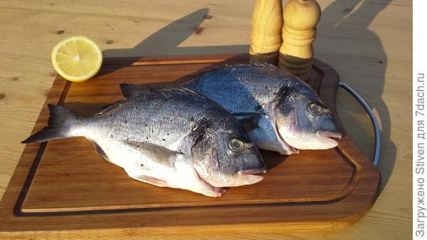 Рыбу посолить, поперчить