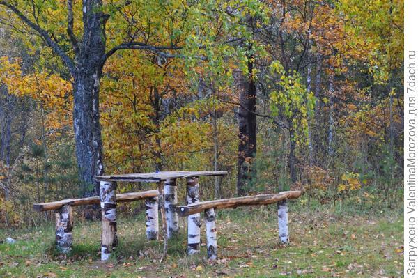 На опушке леса,.люблю здесь гулять Река лес,сосны и берёзы,а рядом ягоды и грибочки,птички и зверушки.
