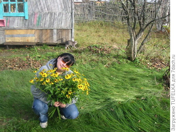 Дача. Октябрь 2008г
