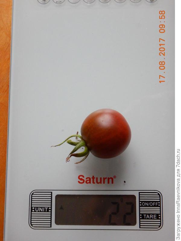 вес одного томата