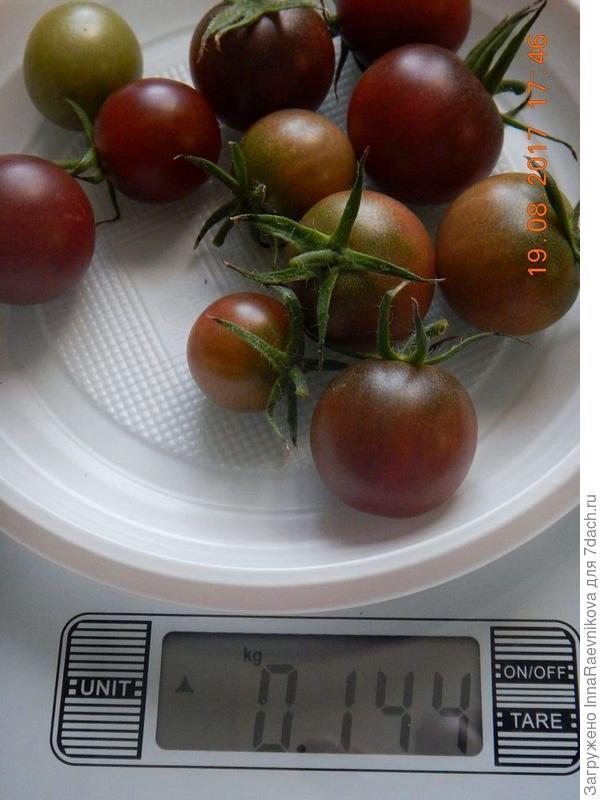 144 гр