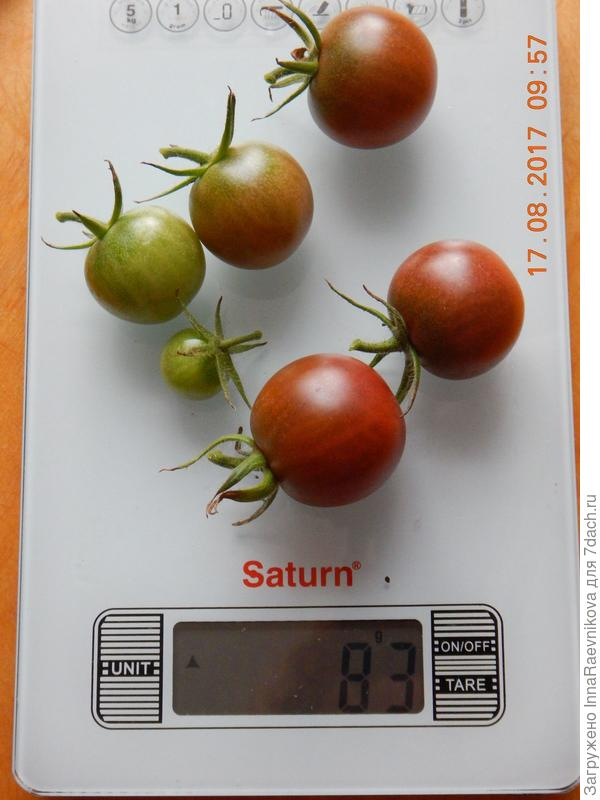 83 гр