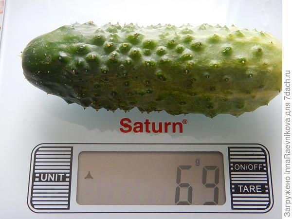 вес 69 гр