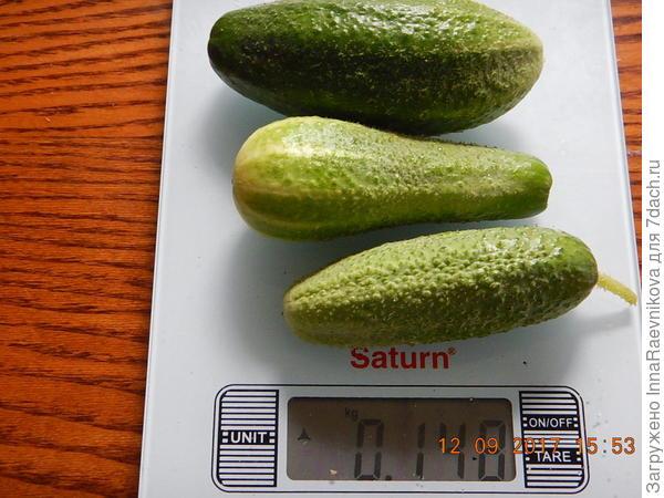 148 гр