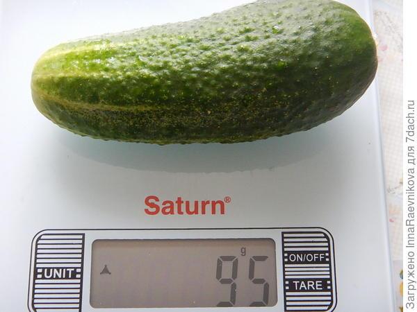 95 гр