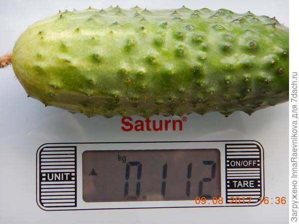 112 гр