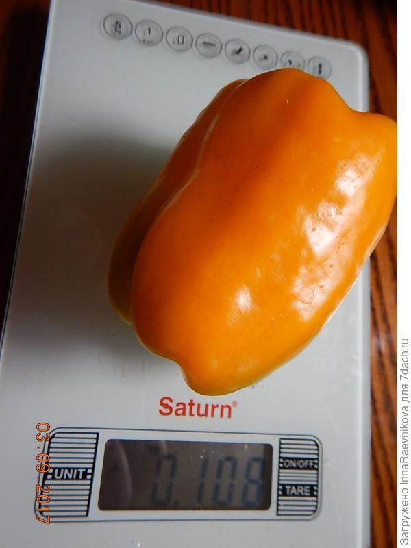 108 гр