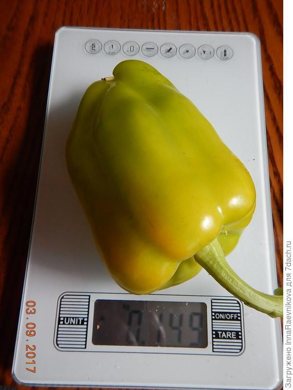 149 гр