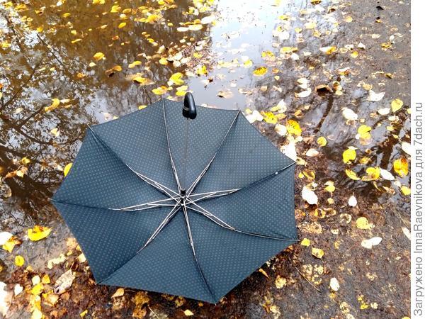 Сильный ветер налетел,  зонтик вырвался из рук. Решил один он прогуляться, в грязной луже поваляться.
