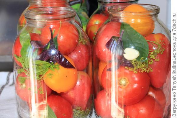 томаты разложить по банкам