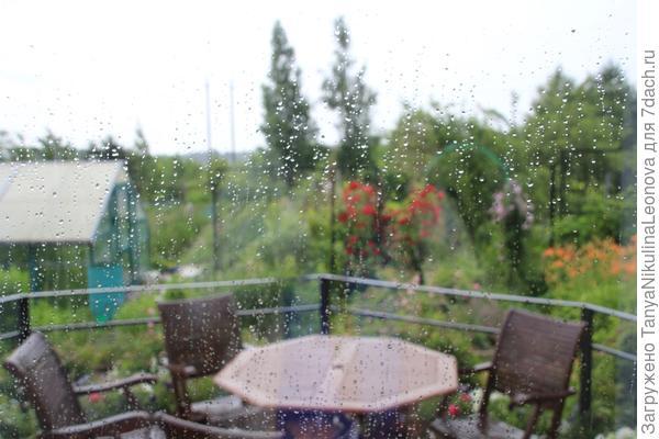 опять дождь! 12.07.2017