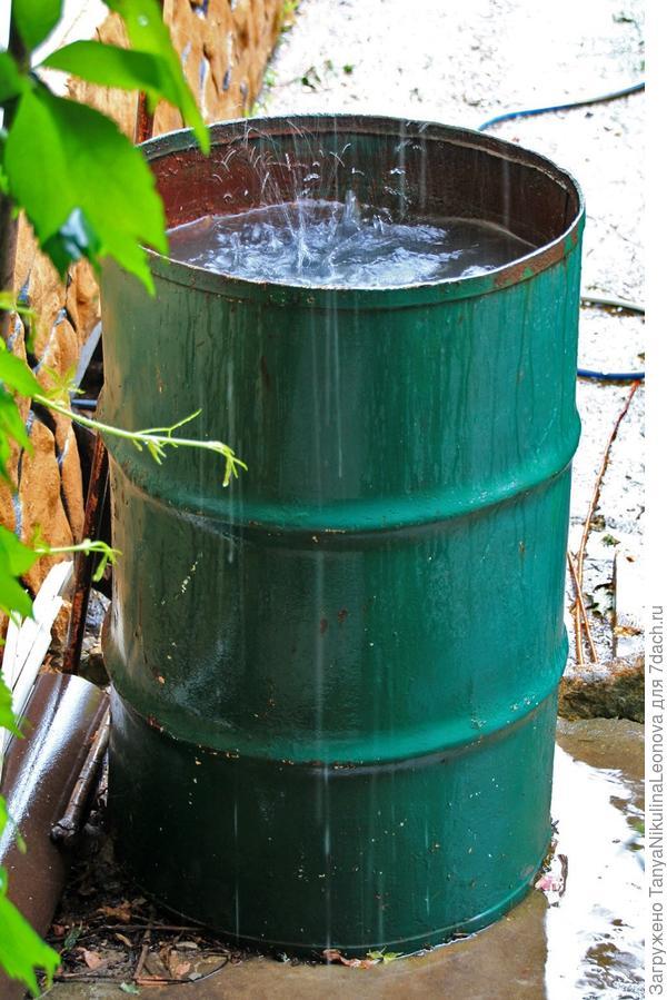 В это лето воды хватает!