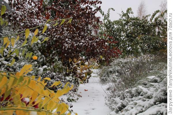 Зима не за горами...