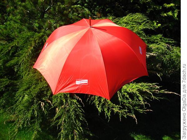 Зонтом «от Viessmann»