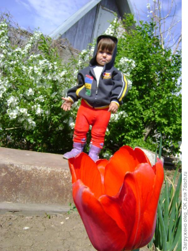 Дети и цветы!