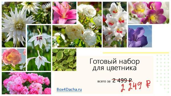 Получите 10% скидку на любой из трех цветников