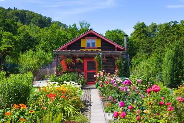 Сад способен дарить позитивные эмоции каждый день — для этого достаточно лишь остановиться и посмотреть вокруг