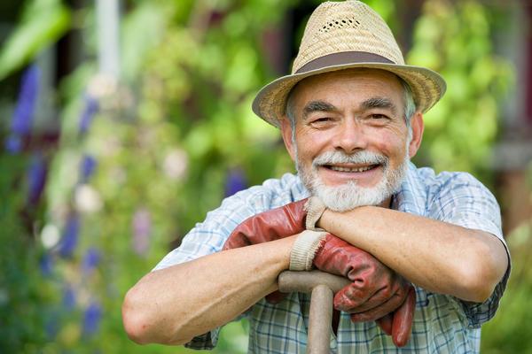 В Блоге огородника мы делимся полезными садовыми советами