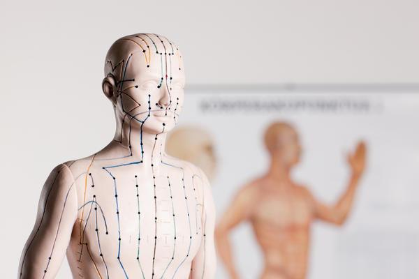 На теле человека более 700 биологически активных точек