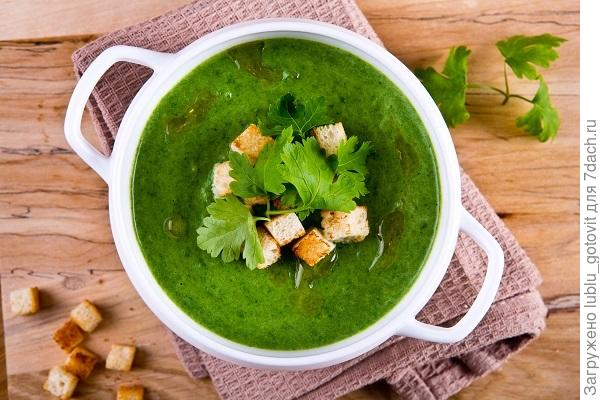 крем-суп из крапивы