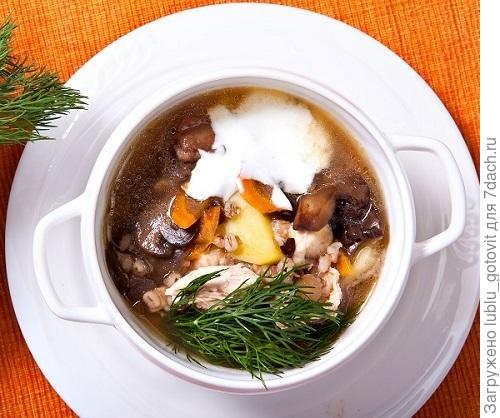 Суп из гуся с перловой крупой  Фото: К. Виноградов/BurdaMedia