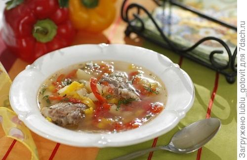 Суп из свиных ребрышек со сладким перцем. Фото: Дмитрий Королько/BurdaMedia