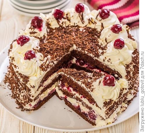 Шварцвальдский торт с вишней и шоколадом/Фото: К. Виноградов/BurdaMedia