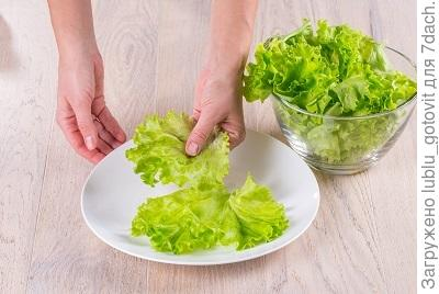Шаг 6. Выкладываем на тарелку листья салата.