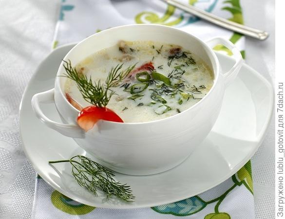 Суп из филе трески с молоком/Фото: Дмитрий Королько/BurdaMedia