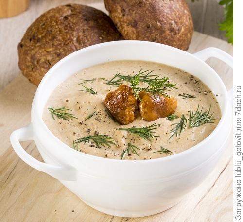 Суп из лисичек/Фото: К. Виноградов/BurdaMedia