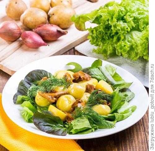Сытный салат с лисичками/Фото: К. Виноградов/BurdaMedia