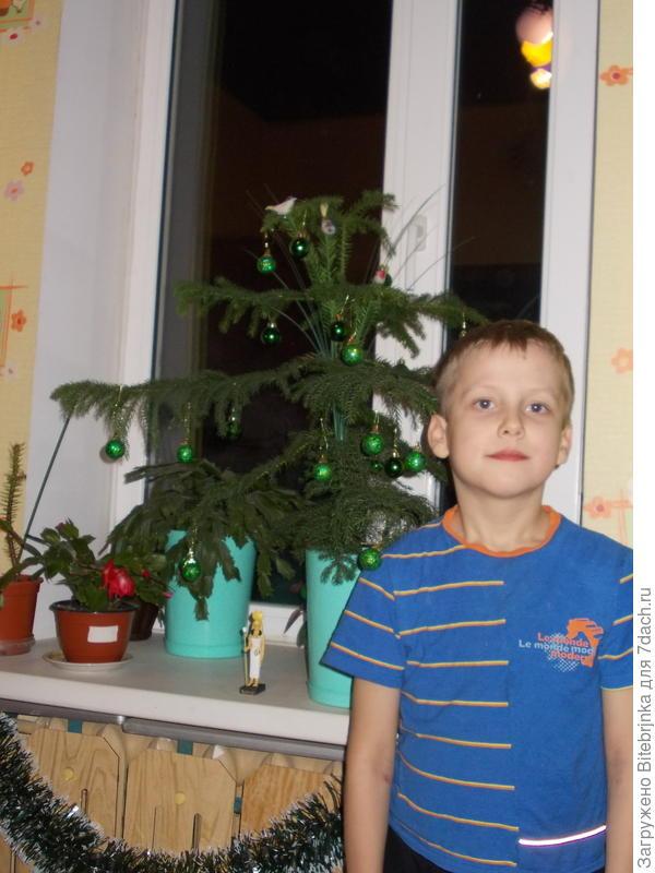 Мой внук Ванечка около Араукарии и декабриста в своей комнате.
