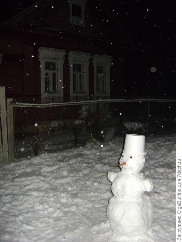 Снеговик. Сорт: Раннезимний