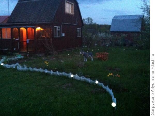 Вечерний сад