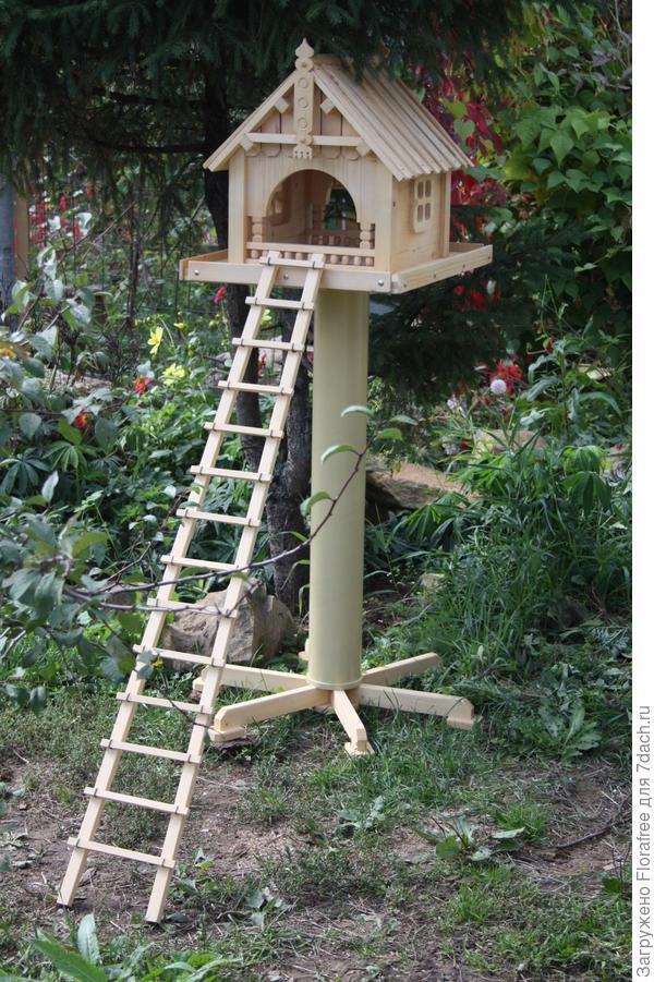 кормушка для кошек птицами