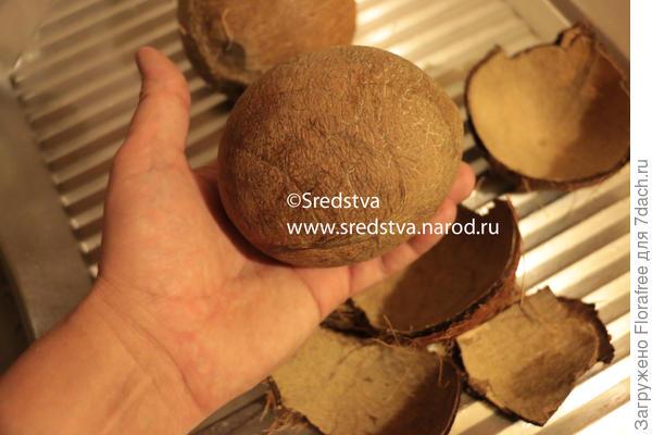 кокос почистил целиком